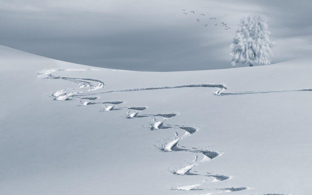 Les pathologies hivernales