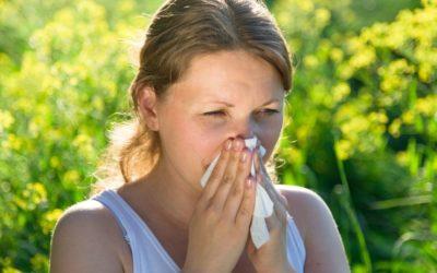 Comment lutter contre les allergies saisonnières ?